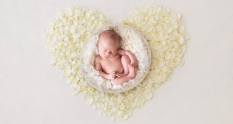 newborn baby girl in a bed of roses