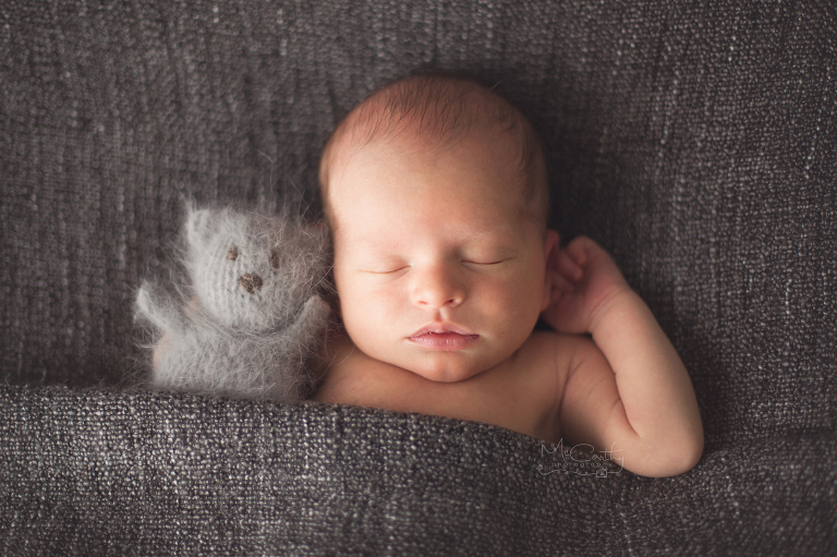 angora knitted bear in newborn session