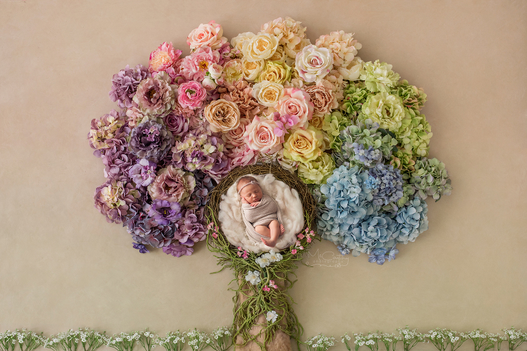 newborn photographer composite floral tree