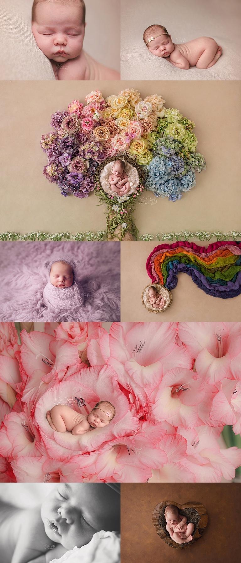 newborn photography sample gallery in strathroy ontario
