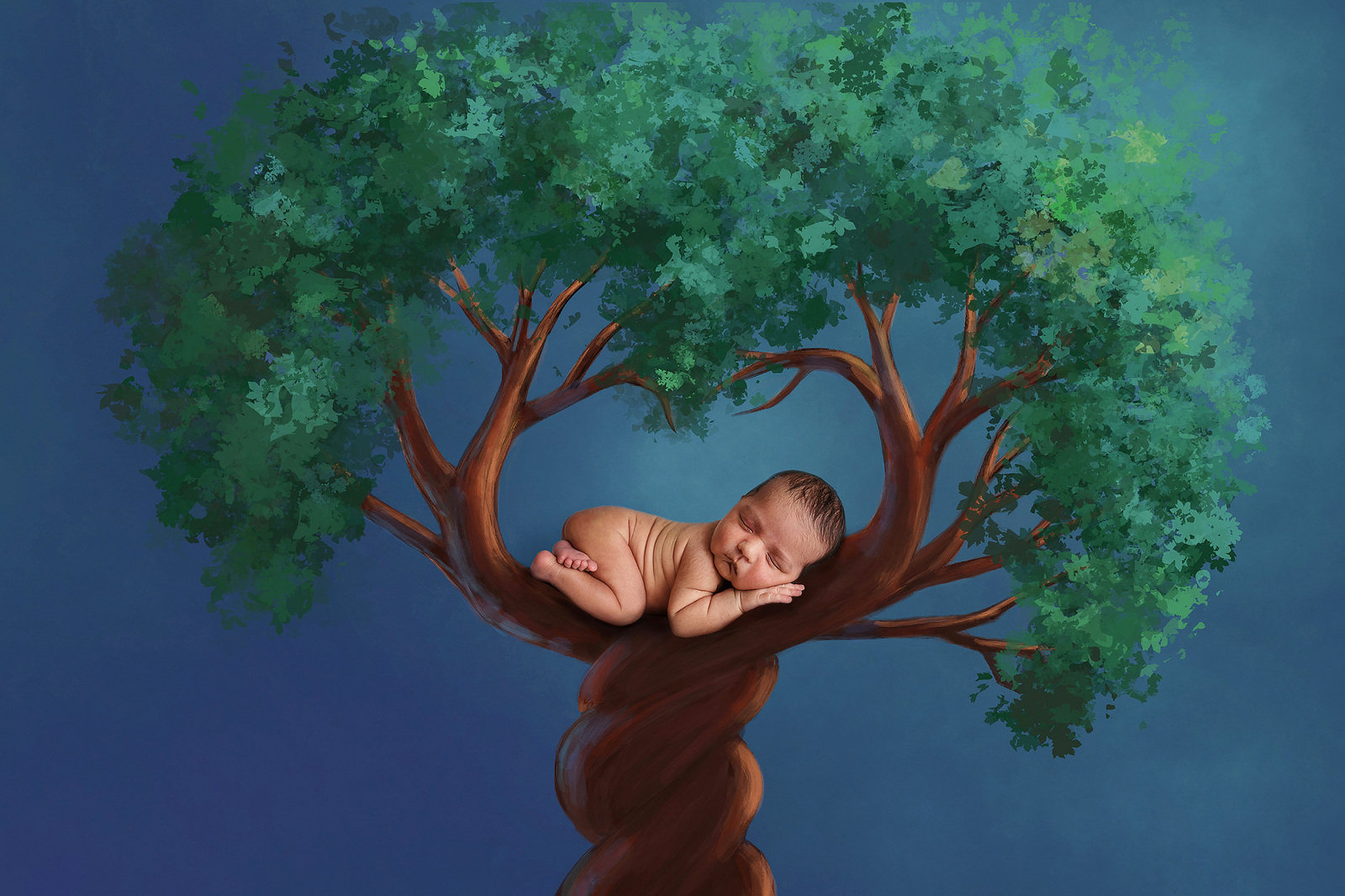 baby newborn posed in a tree